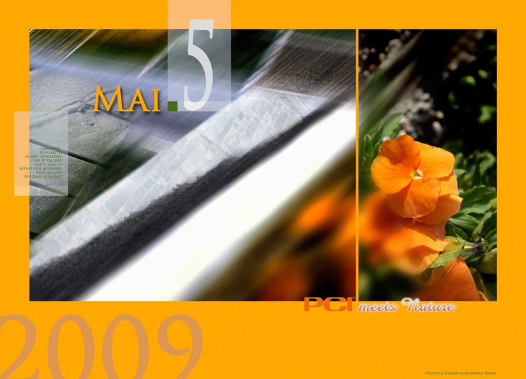 calendar_2009_5