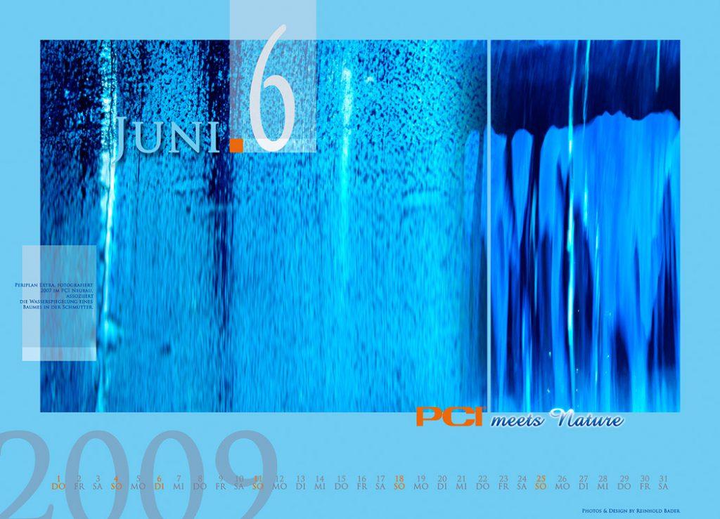 calendar_2009_6