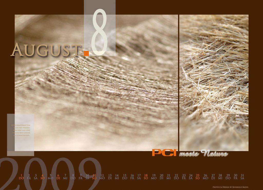 calendar_2009_8